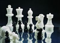 Rolly Toys : Rolly Suuret shakkinappulat ja -ruudut - Rolly Toys haveskak 218707+218752